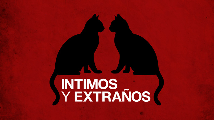 "Film ""Intimos y extraños"" oppening motion graphics design"